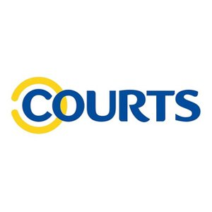 professional translation services in Singapore for Courts