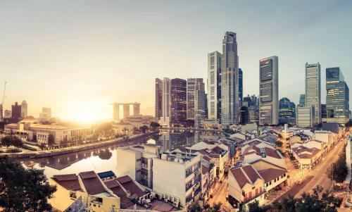 translation agency singapore