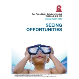 Pan Asian Holding Annual Report 2010